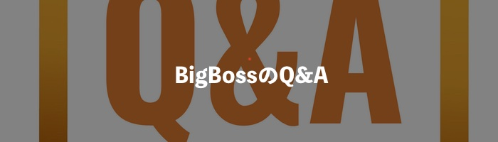 BigBossのQA
